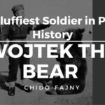 Wojtek The Bear Poland