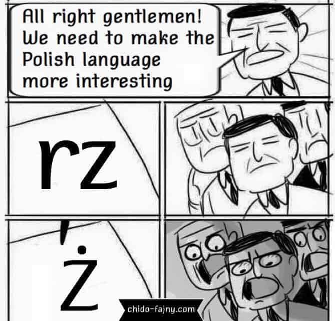 Rz Polish Meme Chido Fajny