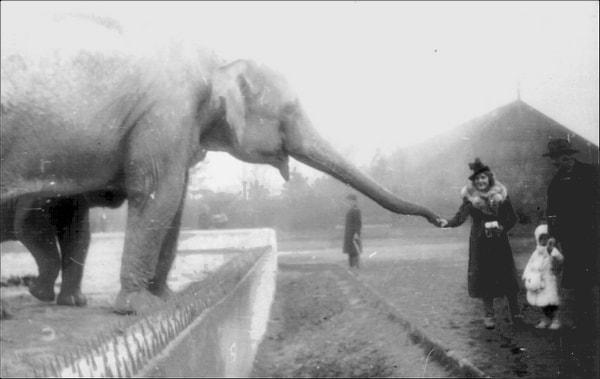 warsaw-zoo-1938-min